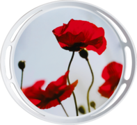 Поднос Classic corn poppies 35см EM509402